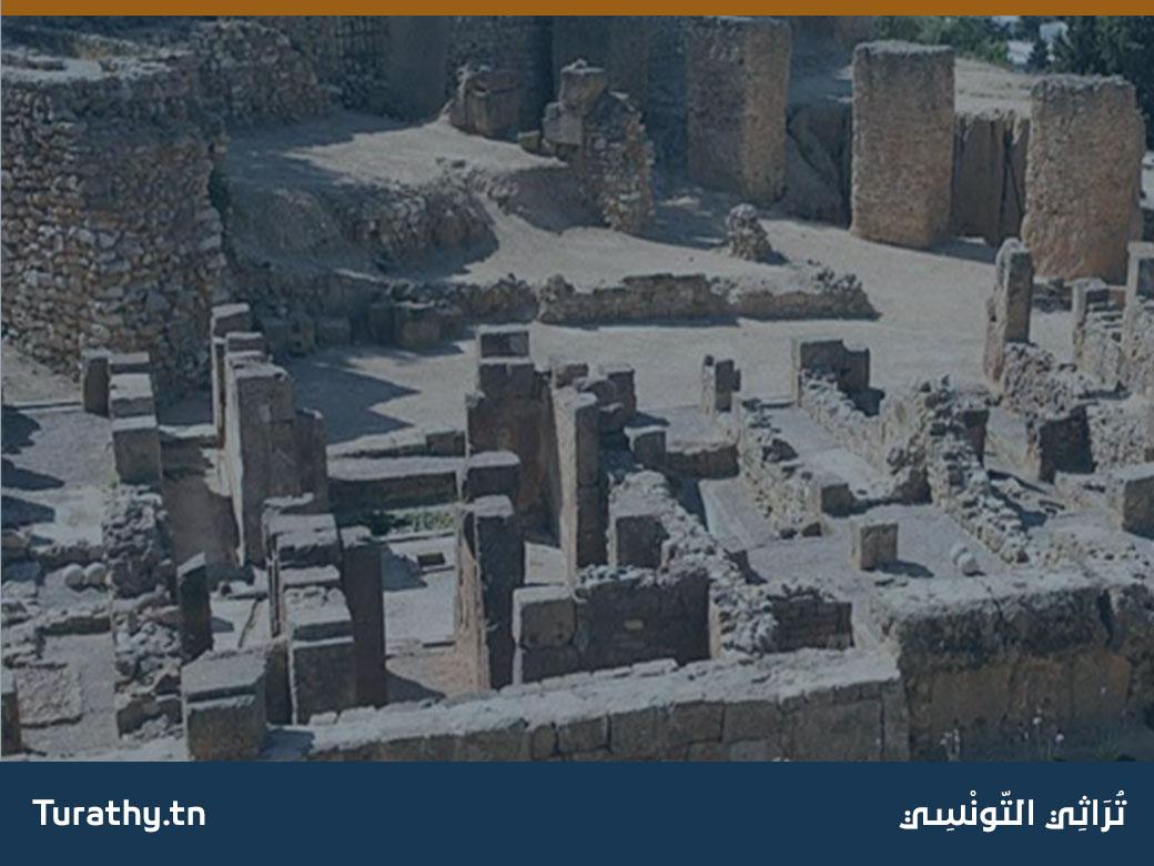 الموقع الأثري بقرطاج